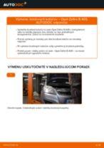 Výmena Brzdový kotouč OPEL ZAFIRA: dielenská príručka