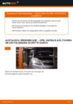 OPEL ZAFIRA B (A05) Kennzeichenleuchten Glühlampe wechseln Anleitung pdf
