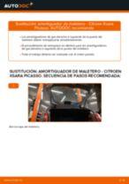 Tutorial paso a paso en PDF sobre el cambio de Kit De Reparación Pinza De Frenos en CITROËN XSARA PICASSO (N68)