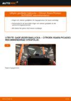 Bilmekanikers rekommendationer om att byta CITROËN Citroen Xsara Picasso 1.6 HDi Bromsskivor