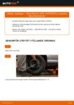 Byta hjullager bak på Opel Meriva X03 – utbytesguide
