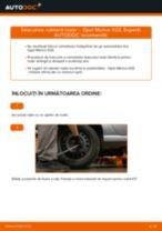 Cum să schimbați: rulment roata din spate la Opel Meriva X03 | Ghid de înlocuire