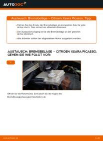 Wie der Wechsel durchführt wird: Bremsbeläge 2.0 HDi Citroen Xsara Picasso tauschen