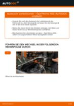 Wechseln von Spritfilter OPEL MERIVA: PDF kostenlos