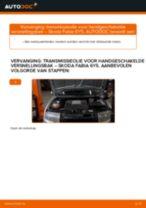 Gratis PDF instructies voor DHZ auto onderhoud.