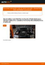 Instrucțiunile online gratuite cum să reînnoiți Ulei de transmisie SKODA FABIA Combi (6Y5)