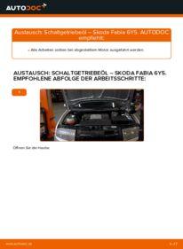 Wie der Wechsel durchführt wird: Getriebeöl und Verteilergetriebeöl 1.4 16V Skoda Fabia 6y5 tauschen