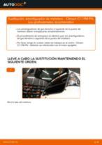 Cambiar Amortiguador De Maletero CITROËN C1: manual de taller