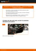 Wie Bremszange hinten links beim TOYOTA AYGO wechseln - Handbuch online