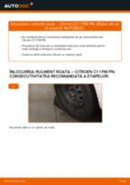 Recomandările mecanicului auto cu privire la înlocuirea CITROËN CITROËN C1 (PM_, PN_) 1.4 HDi Cap de bara
