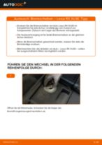 LEXUS RX (MHU3_, GSU3_, MCU3_) Bremsscheiben hinten und vorne tauschen: Handbuch pdf
