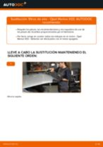 PDF manual sobre mantenimiento MERIVA
