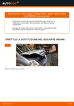 Le raccomandazioni dei meccanici delle auto sulla sostituzione di Cuscinetto Ruota OPEL Opel Meriva x03 1.6 16V (E75)