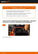 Cambio Cilindro Principal de Freno BMW F20: guía pdf