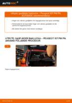 PEUGEOT 107 reparations- och underhåll handledning
