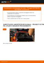 Manual de serviço PEUGEOT 504