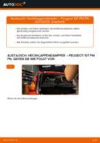 Wie Dämpfer Heckklappe elektrisch beim Peugeot 407 Coupe wechseln - Handbuch online