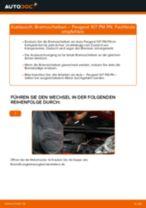 Montage Scheibenbremsen PEUGEOT 107 - Schritt für Schritt Anleitung