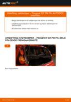Skifte Støtdemper PEUGEOT 107: verkstedhåndbok