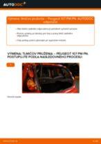 Výmena Tlmič pruzenia PEUGEOT 107: dielenská príručka