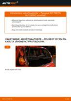 PEUGEOT 107 Lisakomplekt, Ketaspidurikate vahetus: tasuta pdf