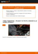 Autószerelői ajánlások - PEUGEOT PEUGEOT 107 1.4 HDi Féktárcsa csere
