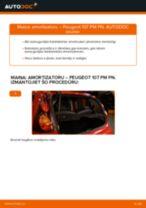 PEUGEOT 107 Amortizators maiņa: bezmaksas pdf
