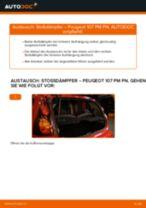 Empfehlungen des Automechanikers zum Wechsel von PEUGEOT PEUGEOT 107 1.4 HDi Stoßdämpfer