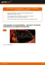 Advies en uitleg voor het vervangen van het Remslang van de Smart Roadster Coupe 452