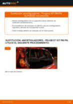 Instalación Kit amortiguadores PEUGEOT 107 - tutorial paso a paso