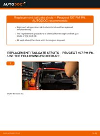 How to carry out replacement: Tailgate Struts on 1.0 PEUGEOT 107