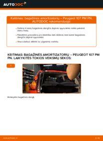 Kaip atlikti keitimą: 1.0 PEUGEOT 107 Bagazines Amortizatorius