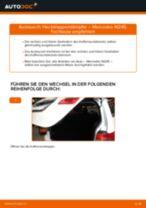 Schrittweise Reparaturanleitung für MERCEDES-BENZ B-Klasse (W247)