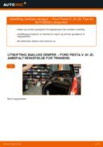 Mekanikerens anbefalinger om bytte av FORD Ford Fiesta Mk6 1.4 TDCi Sidespeil