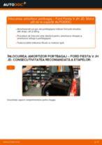 Recomandările mecanicului auto cu privire la înlocuirea FORD Ford Fiesta Mk6 1.4 TDCi Oglinda exterioara