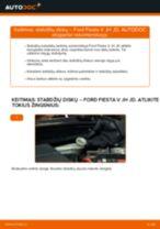 Ford Fiesta Mk4 online vadovas