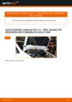 Come cambiare cinghia poly-V su Opel Zafira F75 - Guida alla sostituzione