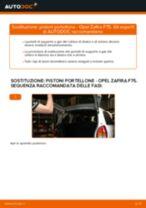 Come cambiare pistoni portellone su Opel Zafira F75 - Guida alla sostituzione