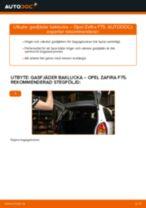 Byta gasfjäder baklucka på Opel Zafira F75 – utbytesguide
