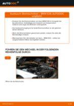 Installation von Scheibenbremsen BMW 5 (E39) - Schritt für Schritt Handbuch