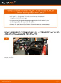 Comment effectuer un remplacement de Verin De Hayon sur 1.4 TDCi Ford Fiesta Mk5
