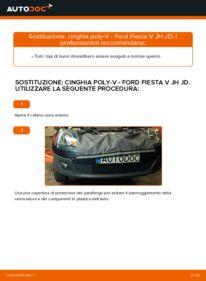 Come effettuare una sostituzione di Cinghia Poly-V su 1.4 TDCi Ford Fiesta V jh jd