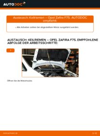 Wie der Wechsel durchführt wird: Keilrippenriemen 2.0 DTI 16V (F75) Opel Zafira f75 tauschen