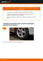 Xenonlicht wechseln BMW 5 SERIES: Werkstatthandbuch