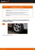 Aprender cómo solucionar el problema con Cojinete de Rueda delantera y trasera BMW