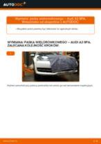 Jak wymienić pasek wielorowkowy w Audi A3 8PA - poradnik naprawy