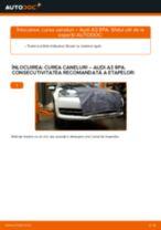 Înlocuirea Telescoape la AUDI A3 Sportback (8PA) - sfaturi și trucuri utile