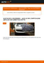 AUDI A3 Sportback (8PA) Bremsscheiben wechseln hinten und vorne Anleitung pdf