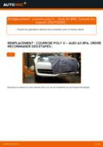 Notre guide PDF gratuit vous aidera à résoudre vos problèmes de AUDI Audi A3 Sportback 1.9 TDI Essuie-Glaces