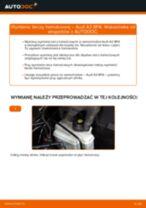 Jak wymienić tarcze hamulcowe tył w Audi A3 8PA - poradnik naprawy